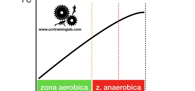 Allenamento Aerobico: che cos'è e a cosa serve?